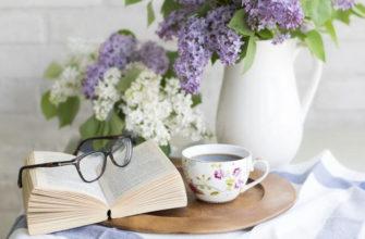 Книжные новинки июня, на которые стоит обратить внимание